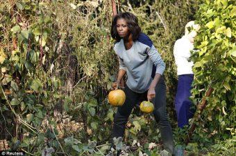 Michelle O. ceuille des citrouilles pour Halloween.